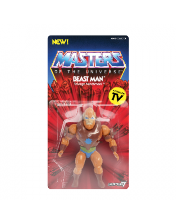 Super7 Masters of the...