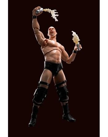 Bandai S.H.Figuarts WWE...